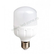 Bec LED E27 10W Dispersor Mat T60