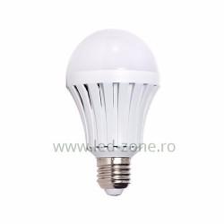 Bec LED E27 15W Glob Mat