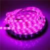 Banda LED 2835 60 SMD/ML Silicon Magenta