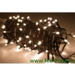 Instalatie LED 100 Leduri 5mm Exterior Conectabila Diverse Culori