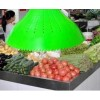 Lampa LED 25W E27 Iluminat Vitrina Legume-Fructe